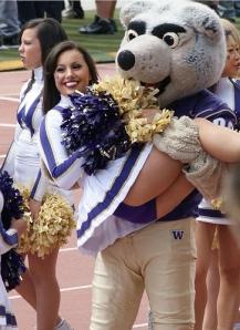 college Cheerleader, Washington Huskies